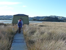 Pauatahanui Inlet with bird hide. Photo: Matt Barnett.