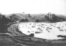 Boats in Home Bay in the 1900s, Motutapu Island. Photo: copyright DOC.
