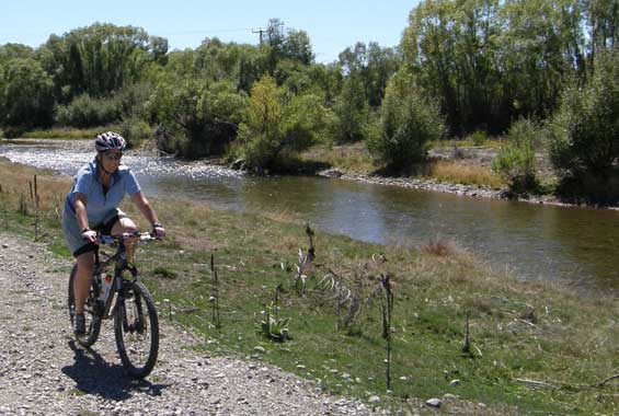 Mountain biking on the Twizel River Trail.