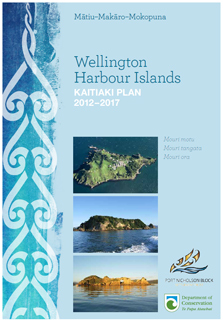 Wellington Harbour Plan cover page.
