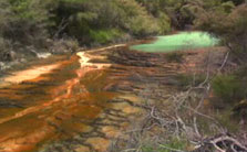 Click this image from the Waimangu Valley clip to view the video. Image copyright: TVNZ.