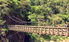 Click this image from the Karangahake Gorge clip to view the video. Image copyright: TVNZ.