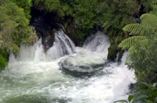 Click this image from the Okere Falls clip to view the video. Image copyright: TVNZ.