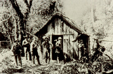 The original Beech hut, Milford Track. Photo: Hocken Library.