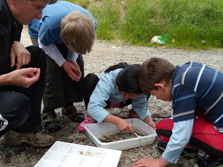 School children from Kendal School sorting out different kinds of stream life, Cust River, Canterbury.
