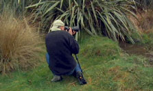 Click this image from the Wildlife Photographer clip to view the video. Image copyright: TVNZ.