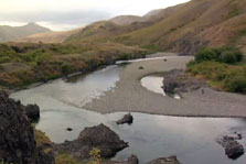 Click this image from the Molesworth Station clip to view the video. Image copyright: TVNZ.