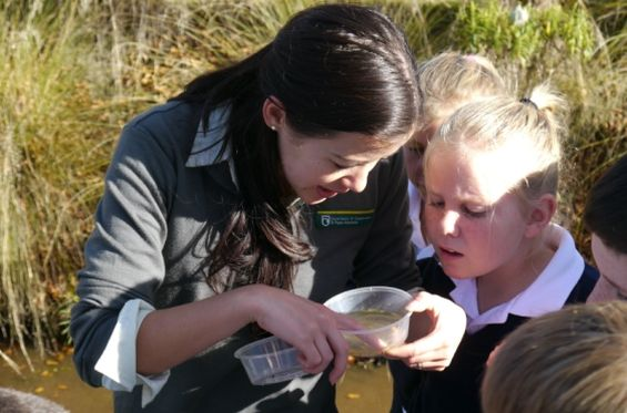 Lawrence Area School children and Lan look at invertebrates they caught in Boundary Creek. Photo: Ellen Sima