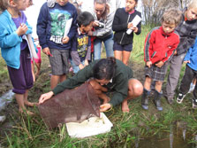 DOC ranger Kylie showing children what creatures are found in Lake Waiparera.