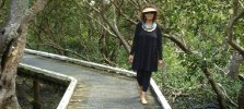 Boardwalk at Limeburners Creek, Whangarei.