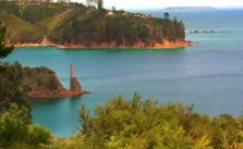 Click this image from the Kawau Island clip to view the video. Image copyright: TVNZ.
