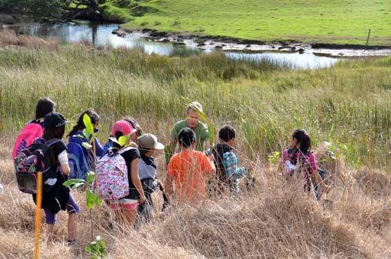 Students learning sucessful planting techniques from Northland Conservation Board member Mike Finlayson.