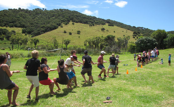 DOC staff and Project Island Song volunteers (on right) versus the Urupukapuka Bay campers in the annual Tug o' War.