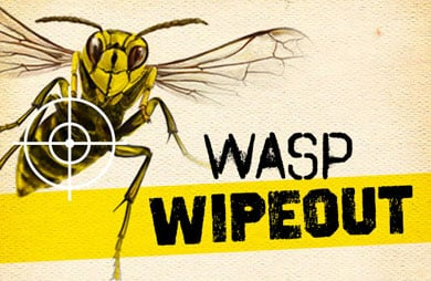 Wasp wipeout logo.