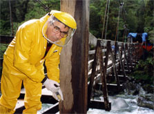 Injecting preservative chemicals into the wooden supports of the Cleddau horse bridge, Fiordland National Park. Photo: Paul Wilson.