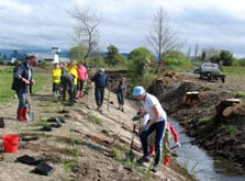 Volunteers undertaking planting at Makoura Stream, Wairarapa. Photo: Sandra Burles.