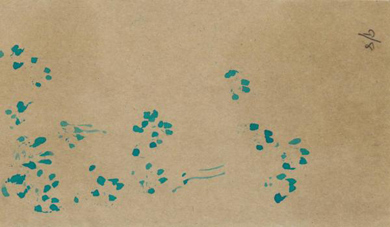 Stoat footprints on tracking card.