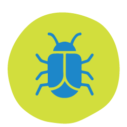 make-friends-with-a-bug-icon.png