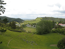 View from Waitomo Walkway. Photo: Adrienne Grant.