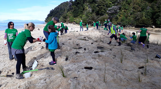 Greenteam planting day at Apple Tree Bay.