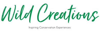 Wild Creations | Inspiring conservation experiences.