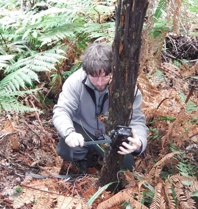 DOC ranger George Nicholas installing a trail camera on Ulva Island to film the rat. Photo: Pete McClelland.