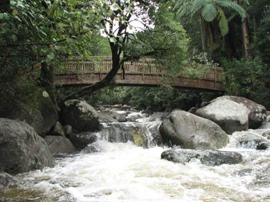 Bridge over Wairere Falls.