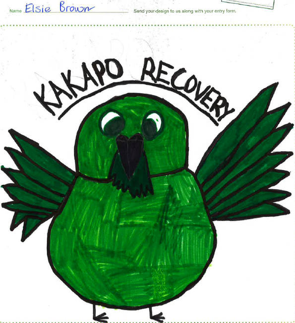 kakapo-tee-competition-special-mention.JPG