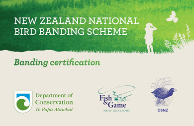 how to become a certified bander bird banding