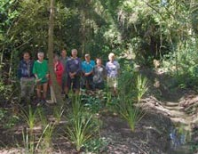 Volunteer planters at Tate's Reserve in Greytown. Photo: Amanda Cosgrove.