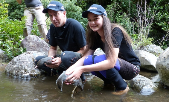 Sarah Ridsdale with her dad and whio rangers releasing whio on the Mangetapopo River in Tongariro National Park.