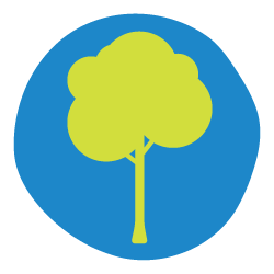 Get to know a tree icon.