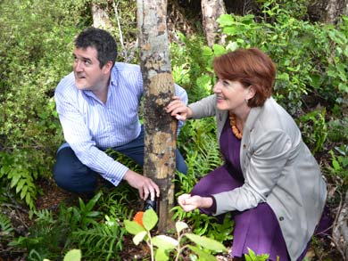 Minister of Conservation Maggie Barry and MP Chris Bishop install the first of 1,200 new stoat traps in the Rimutaka Forest Park.