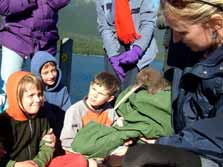 Lake Rotoiti school pupils with Awaroa, female kiwi from first kiwi transfer. Photo: Nelson Mail.