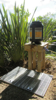 Kauri dieback boot cleaning station.