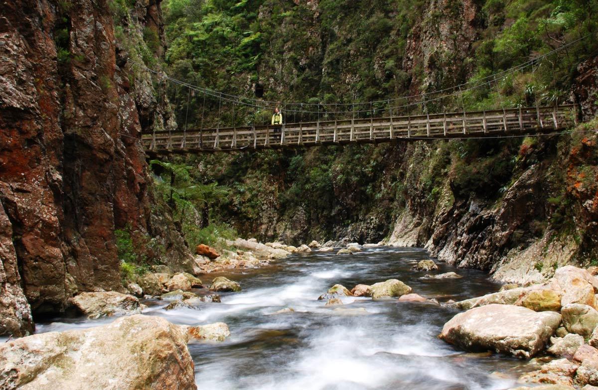 Karangahake Gorge: Places to go in Kaimai Conservation Park