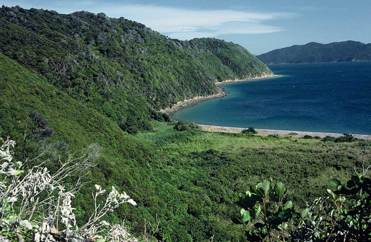 long island kokomohua marine reserve sounds area places to visit. Black Bedroom Furniture Sets. Home Design Ideas