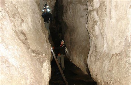 Children climbing ladder in Mangaone Caves.