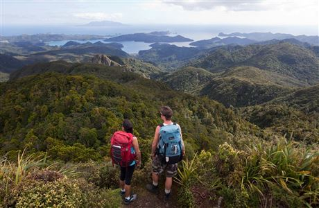 People looking at view from Great Barrier Island.