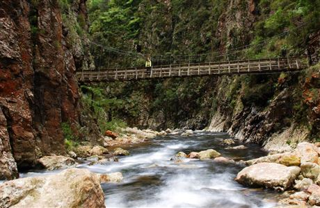 Bridge at Karangahake Gorge.