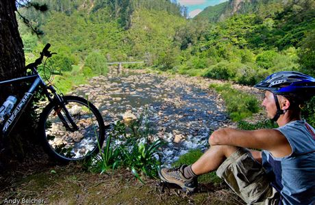 Mountain biker at Karangahake  Gorge.