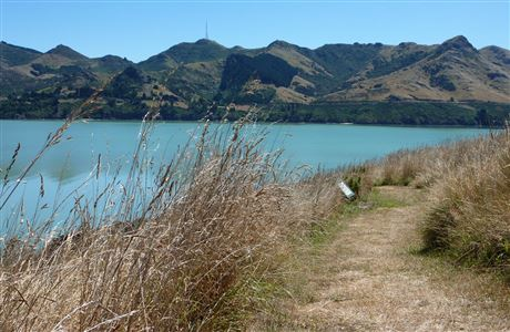 View from Quail Island.