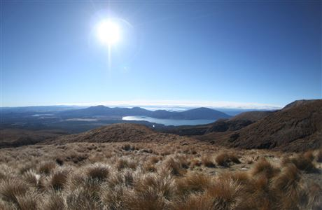 View from Ketetahi Track with lens flare.