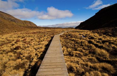 Boardwalk on Tongariro Northern Circuit.