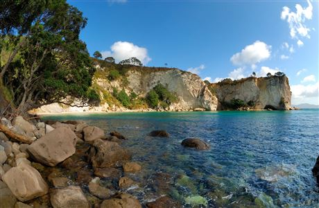 Stingray Bay, Coromandel.