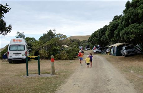 Road through Port Jackson campsite.