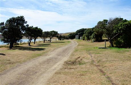Road through Port Jackson Campsite