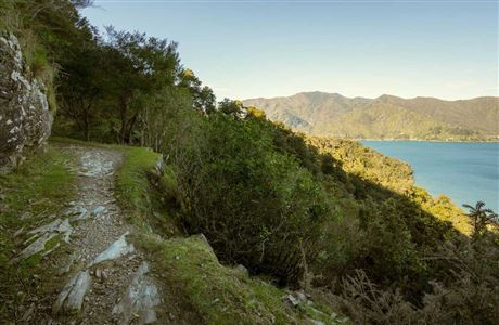 Queen Charlotte Track - first marked lookout.