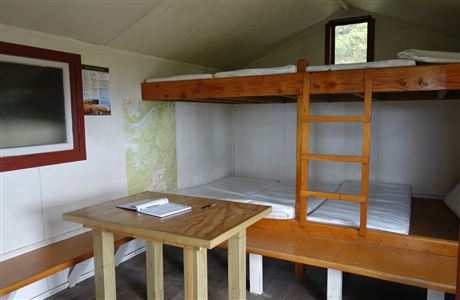 Bunks in Mt Arthur Hut.