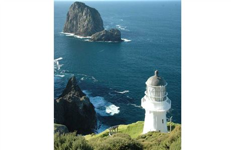 Cape Brett lighthouse.